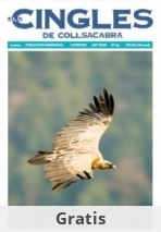 Revista ELS CINGLES - n59 Juliol 2008