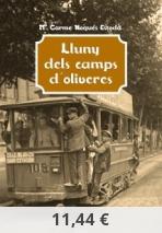 Lluny dels camps d'oliveres